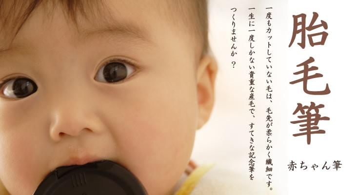 伝統工芸士作 赤ちゃん筆(誕生記念筆・胎毛筆)