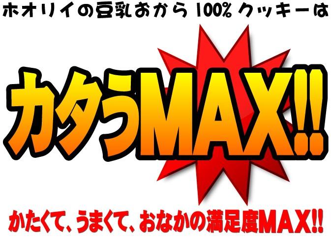 ホオリイの豆乳おから100%クッキーはカタうMAX!!