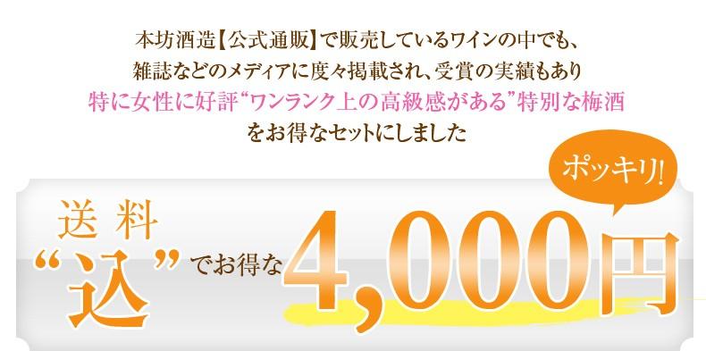 送料込みの4000円