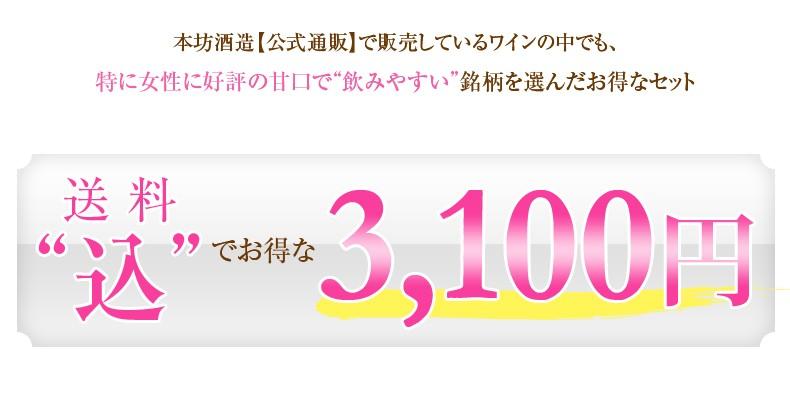 送料込みで3100円