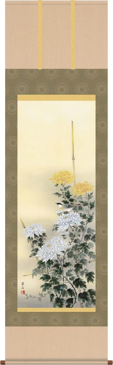掛け軸 掛軸-【H30】流麗菊花/高見 蘭石(尺五・桐箱・風鎮付)和室、床の間に飾る