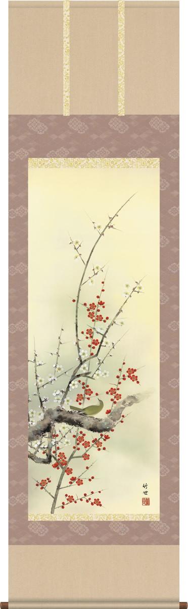 掛軸 掛け軸-【第五十五集】紅白梅に鶯[春]/田村竹世 花鳥画掛軸送料無料(尺五・桐箱・風鎮付き・緞子)