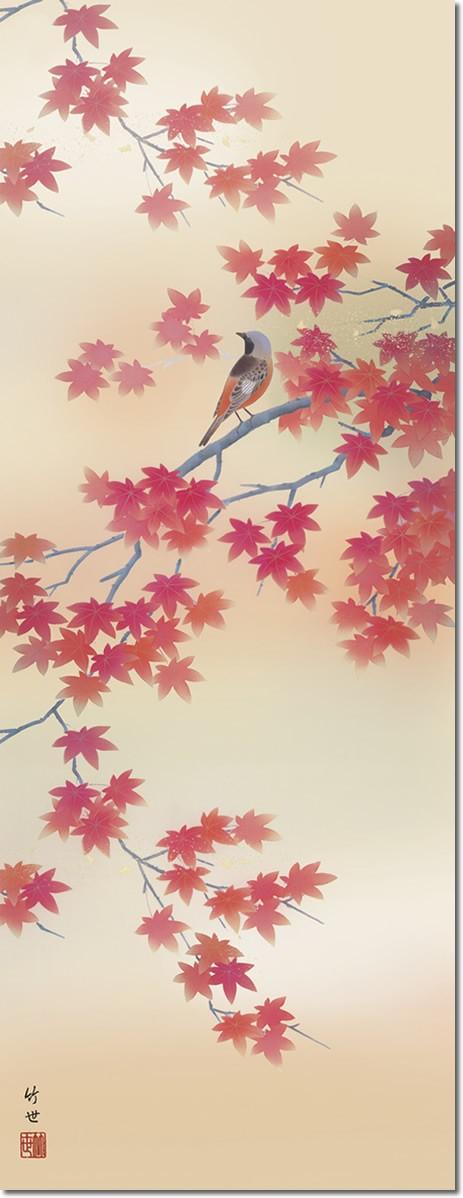 掛軸 掛け軸-【第五十五集】紅葉に小鳥[秋]/田村竹世 花鳥画掛軸送料無料(尺五・桐箱・風鎮付き・緞子)