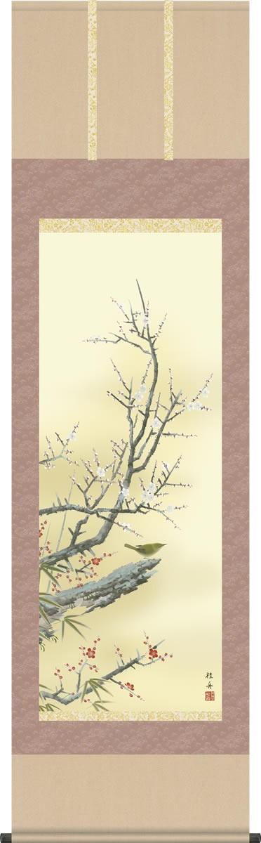 掛け軸-梅に鶯/長江桂舟(尺五・桐箱・風鎮付き)花鳥画掛軸