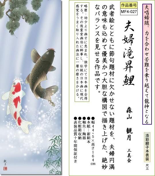 掛け軸-夫婦滝昇鯉/森山観月(小さい尺三・化粧箱・風鎮付き)