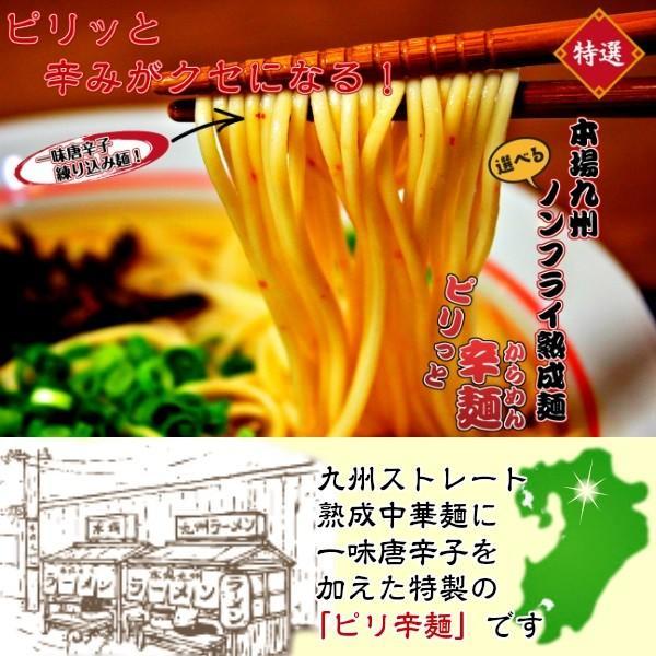 ポイント消化 沖縄そば味 500円 ご当地スープ 2人前セット お取り寄せ 豚骨ベース + 鰹だし旨味 ラーメン メール便商品 保存食お試しグルメ|honba-kyusyu|19
