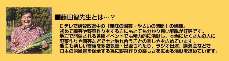 藤田智先生プロフィール