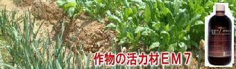 作物の活力材、EM7