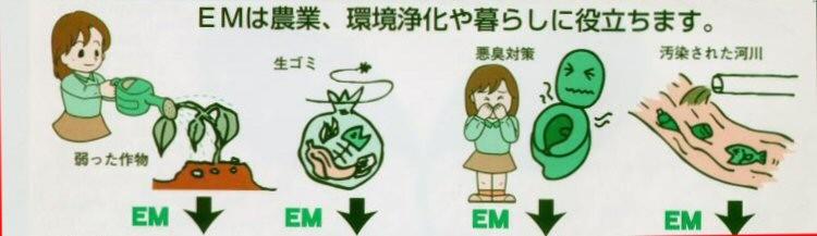 EM菌は農業、暮らしに役立ちます。