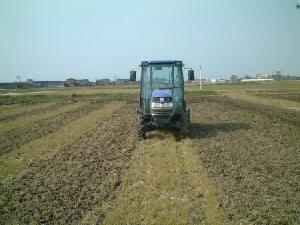 有機米コシヒカリ栽培田の耕運作業中