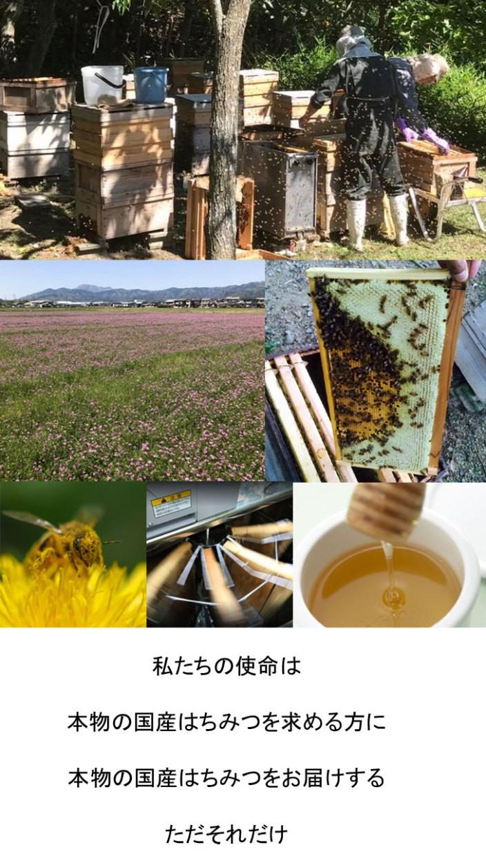 はちみつ生産直売の春日養蜂場 蜂場にてミツバチの巣からはちみつを取り出す様子と、レンゲ畑の写真