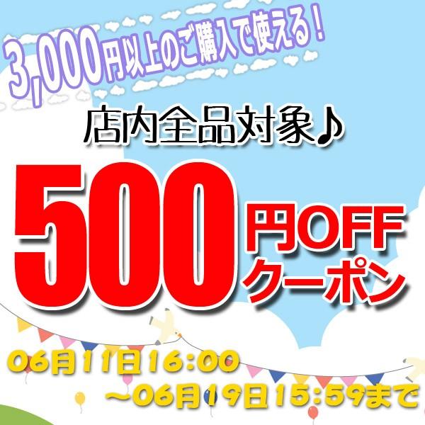 【特別発行】500円OFFクーポン!