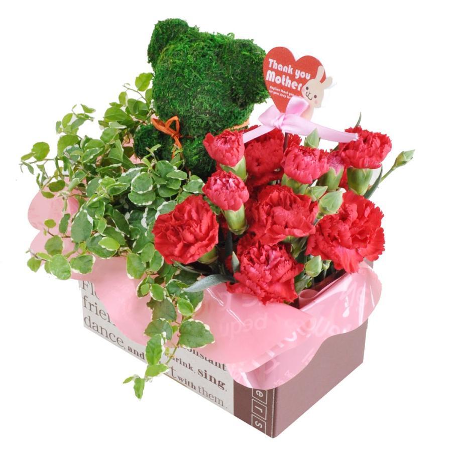 母の日 2021 プレゼント カーネーション トピアリーモス セット 花 ギフト 母の日ギフト|honmamonya|05