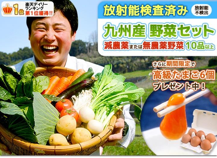 九州産の新鮮野菜をお届けいたします!放射能測定済み