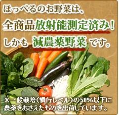 減農薬野菜