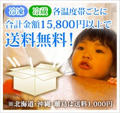 15800円以上で送料無料