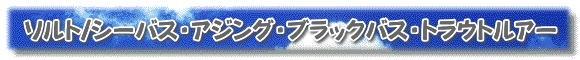 ソルト/シーバス・アジング・ブラックバス・トラウトルアー