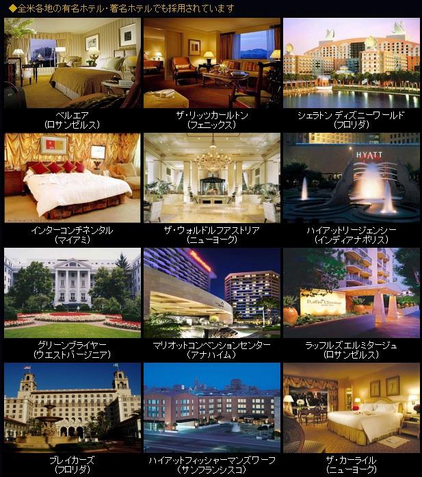 全米各地の有名ホテル・著名ホテルでも採用されています ベルエア(ロサンゼルス) ザ・リッツカールトン(フェニックス) シェラトン ディズニーワールド(フロリダ) インターコンチネンタル(マイアミ) ザ・ウォルドルフアストリア(ニューヨーク) ハイアットリージェンシー(インディアナポリス) グリーンブライヤー(ウエストバージニア) マリオットコンベンションセンター(アナハイム)ラッフルズエルミタージュ(ロサンゼルス) ブレイカーズ(フロリダ) ハイアットフィッシャーマンズワーフ(サンフランシスコ) ザ・カーライル(ニューヨーク)
