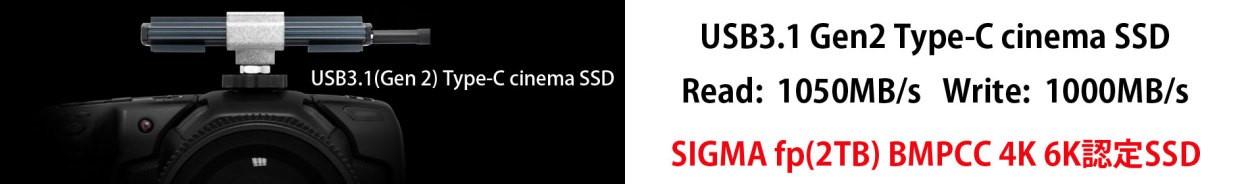 Delkin USB Type-C cinemaSSD