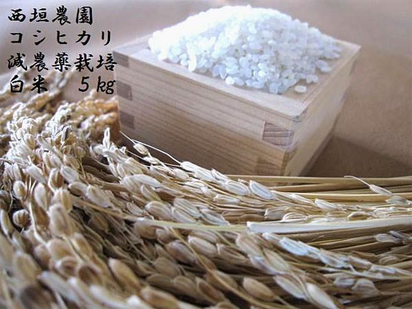 """西垣農園『いずしろまん』コシヒカリ""""減農薬栽培(化学肥料不使用)""""白米"""