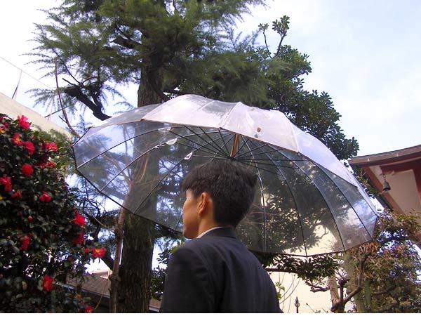 雨風の強い日などに活躍