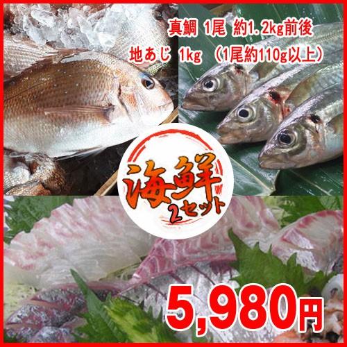 鮮魚2点セット 真鯛 1尾 約1.2kg前後   地あじ 1kg