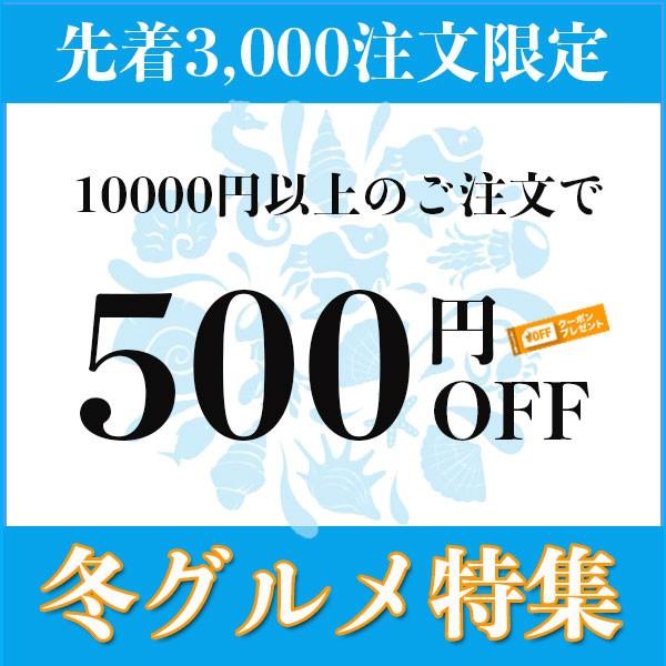 kupoon500