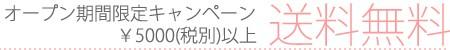 オープン期間限定キャンペーン5000円(税別)以上送料無料!
