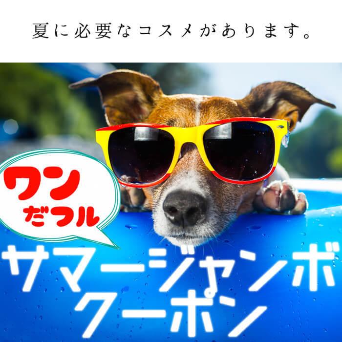 【夏に必要なコスメがあります】222円引き×3回クーポン