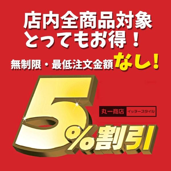 【パソコン用ソフト】丸一商店全品5%OFF!