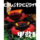 甲殻類(ザリガニ他)