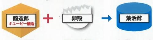 葉活酢(ようかつす)の作り方