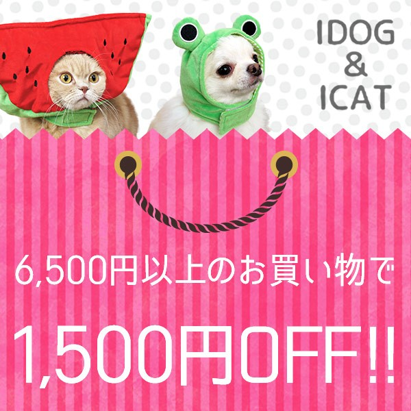 iDog6,500円以上のお買い物で1,500円割引きクーポン