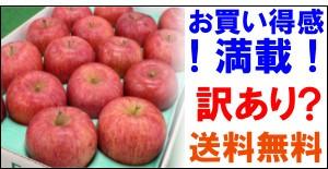 お徳用 福島産サンふじリンゴ