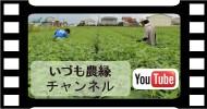 いづも農縁YouTubeチャンネル