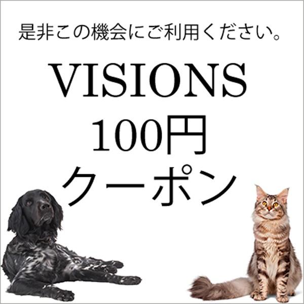 VISIONS 100円クーポン!