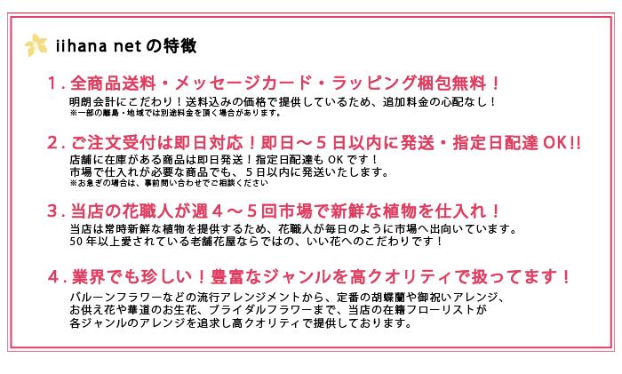iihana netの特徴