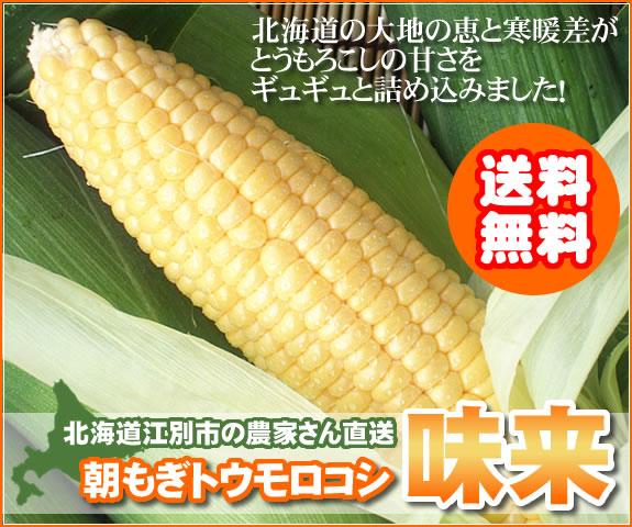 【送料無料】朝もぎとうもろこし味来を北海道から産地直送でお届けします!