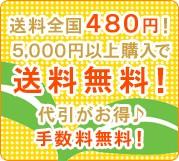 送料全国480円!5000円以上購入で送料無料!