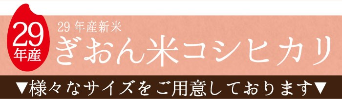 29年産ぎおん米コシヒカリのラインナップ