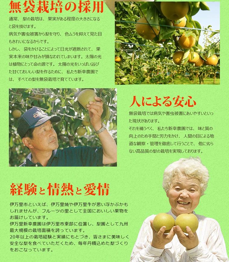 無袋栽培の採用
