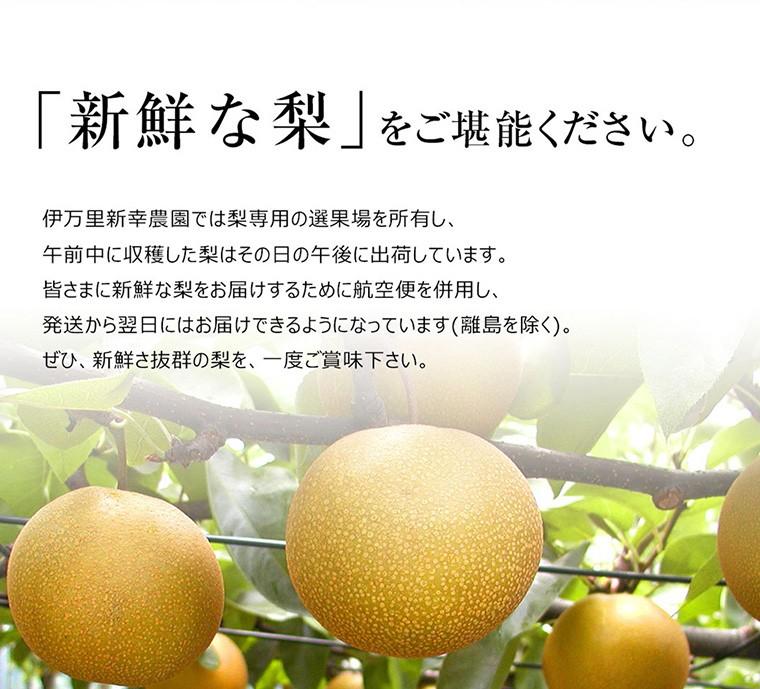 「新鮮な梨」をご堪能ください