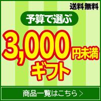 3000円未満のギフト