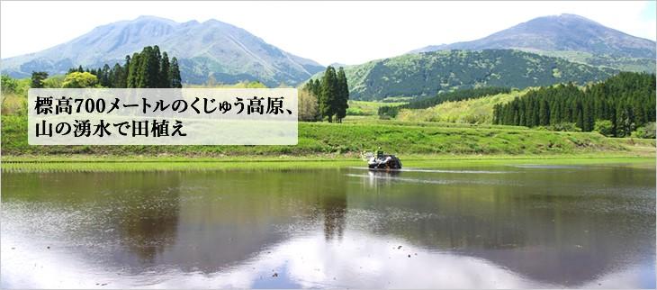 阿蘇くじゅう高原の田植え風景
