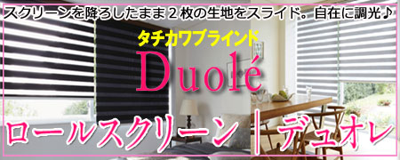 タチカワブラインド・ロールスクリーン「デュオレ」40%OFF!