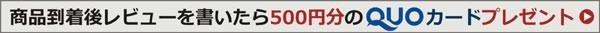 レビューを書いてQUOカード500円をゲット!