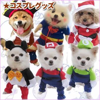 犬服・洋服・コスチューム・コスプレ・仮装・変身グッズ・動画・撮影