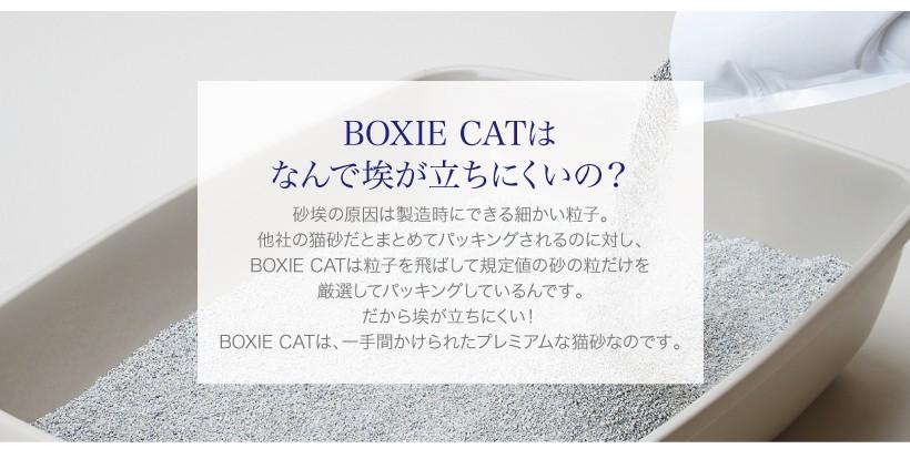 BOXIE CAT グリーン