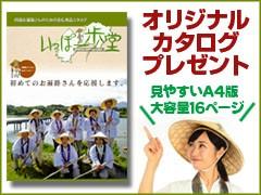 いっぽ一歩堂オリジナル商品カタログ