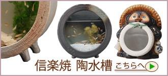 """信楽焼き陶水槽"""""""